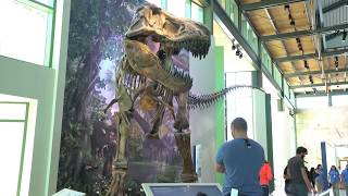 """Witte Museum   """"Texas Deep Time"""" excerpt - feat.  Bo Barker VO (BoVO)"""