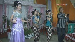 Jago Kluruk Ini Rindu Sragenan Shaka Trend Musik Cursari