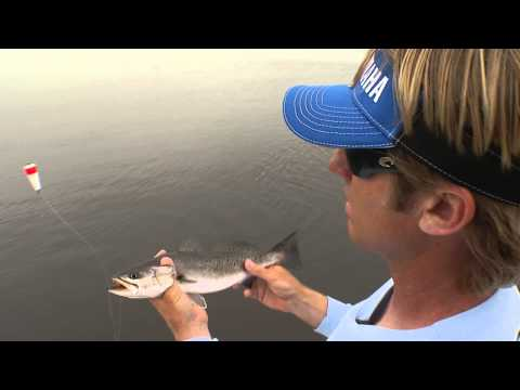 Meet Our Newest Captain: Tommy Derringer - Chevy Florida Insider Fishing Report Season 11, 2015