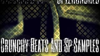 Hip Hop Samples - Crunchy Beats SP Samples