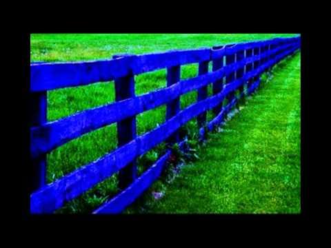 The Greenest of Grass - STR816
