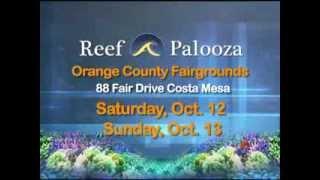 Reefapalooza 2013 Commercial