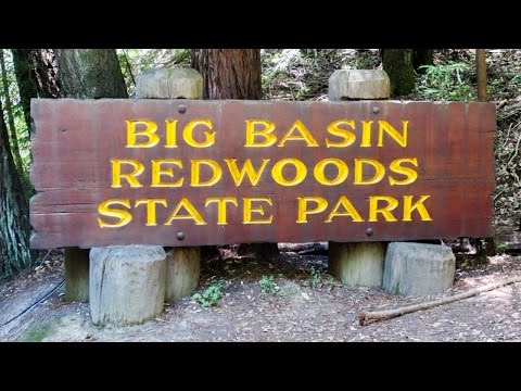 Family Camping at Big Basin Redwoods State Park (California)