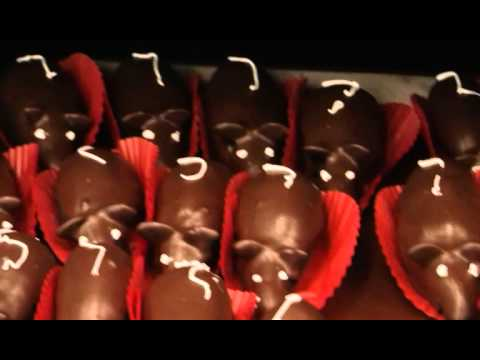 Ratones cubiertos de chocolate en chedraui merida yucatan - Como evitar los ratones ...