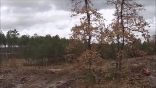 Les Landes, Terre de Trail    Vue du ciel   épisode 1