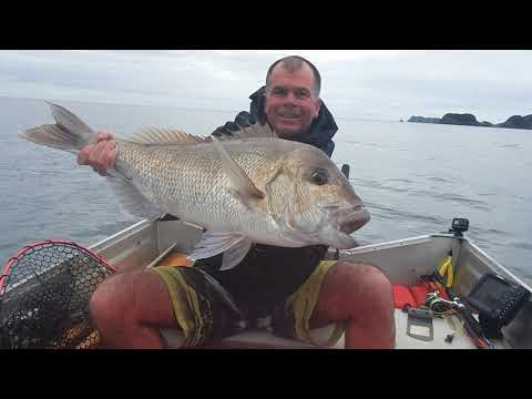 Bay Of Islands Winter Fishing 2019