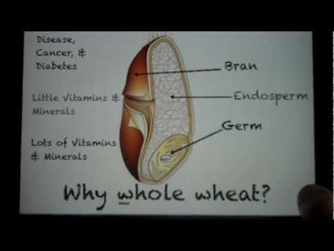 Why Whole Wheat?