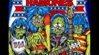 09. GREEN DAY - Outsider ( A Tribute To Ramones)