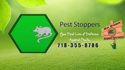 Bed Bug Exterminator Brooklyn NY - Bed Bug Inspection Brooklyn NY
