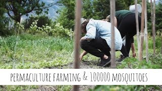 LIVING TINY GOES FARMING & BABY MAIL UNPACKING | weekly vlog 006 | living tiny