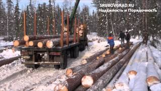 видео Лесозаготовка