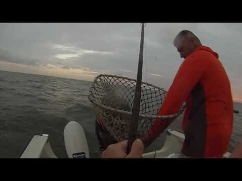 First Time Fishing an Ocean Charter in Galveston,Texas!!!