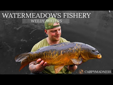 WATERMEADOWS CARP FISHERY