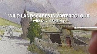 Winter Landscapes in Watercolour: David Bellamy