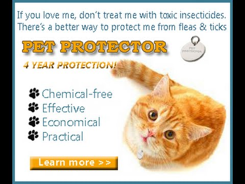 Pet Protector - review. STOP Poisoning your pets !!! - YouTube