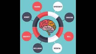 Cognitive development of a child