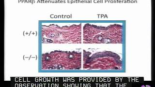 Peroxisome Proliferator-Activated Receptors PPARs Treatment & Prevention Of Diseases