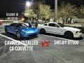 2018 Mustang 5.0 vs Shelby GT500 vs C6 Corvette + Subaru WRX vs G8 GXP