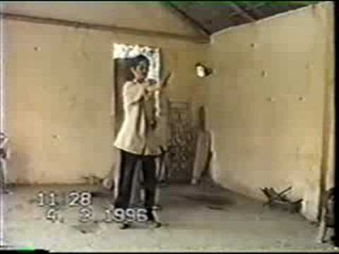Trinh Quoc Dinh - Hand Form Techniques