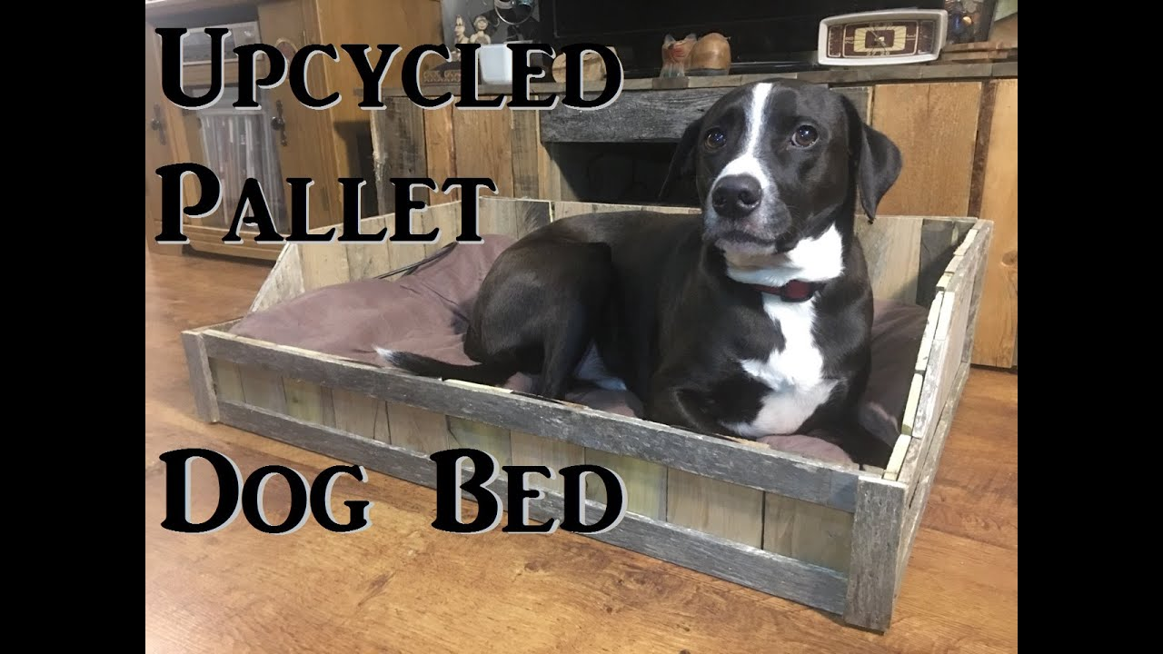 16 Diy Dog Bed Designs Custom Build A Bed For Your Pooch