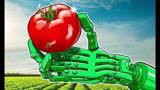 South Indian State of Kerala to Use Blockchain Tech in Food Supply, Distribution,Hk Reading Book,