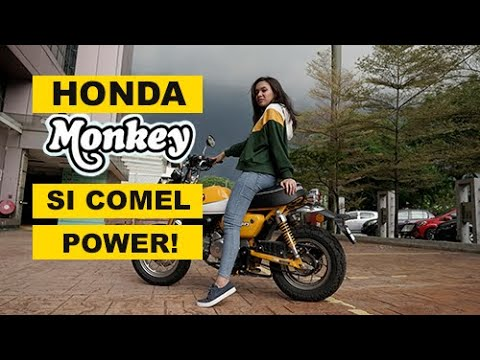 Honda Monkey Motogeo Review Youtube