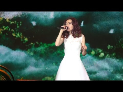 張靚穎--2015巡演北京站《天下無雙》(現場唱給劉亦菲聽)(DV by 小小)