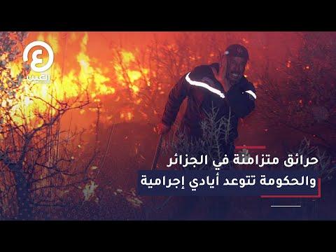 حرائق متزامنة في الجزائر والحكومة تتوعد أيادي إجرامية