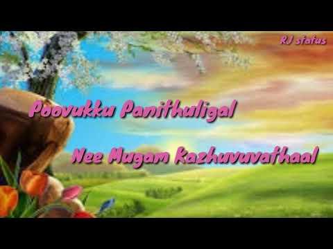 Tamil whatsapp status | boomiku velichamellam | Dishyum whatsapp status lyrics | RJ status