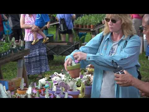 28th Annual Halawa Xeriscape Garden Open House & Unthirsty Plant Sale