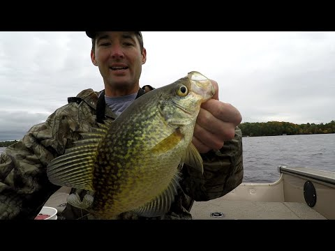 Fall Crappie Fishing - Easy Way To Catch Big Fall Crappie