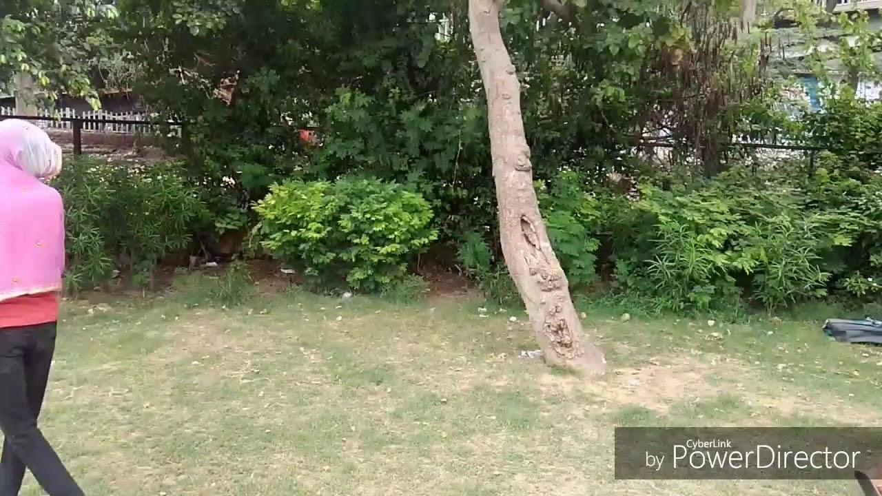 Download Ishq , pyar  Aur  Dhokha !! Rajesh Bhai !!