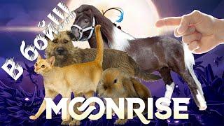 Почти-обзор Moonrise - Пушистики, в бой!