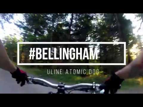 Bellingham Session: Unemployment Line to Atomic Dog