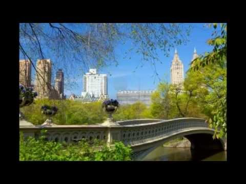 Central Park | USA - United States | New York City