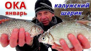 КАЛУЖСКИЙ ШАРИК РУЛИТ Рыбалка на ОКЕ в январе 2021