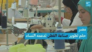 مصر.. حلم تطوير صناعة القطن تدعمه النساء