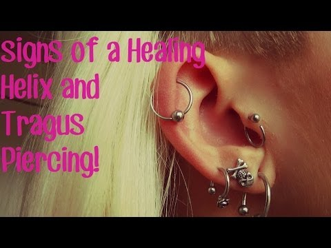 Signs Of A Healing Helix Tragus Piercing Youtube
