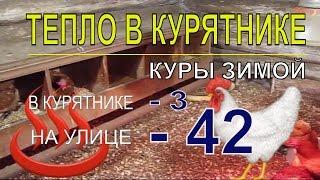 МОРОЗ 42.  в КУРЯТНИКЕ С КУРАМИ НЕСУШКАМИ ЗИМОЙ ТЕПЛО в хозяйстве на своём участке