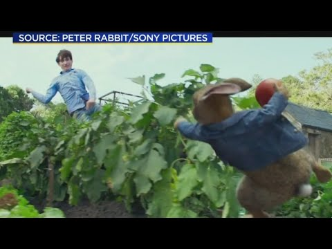Peter Rabbit Film Criticized For Bullying Child With Berry Allergy