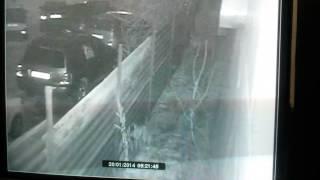 Взлом авто в Алматы