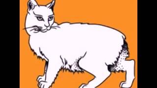 Как нарисовать кошку? Учим детей рисовать кошку простым карандашом