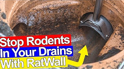 STOP RATS GETTING IN YOUR DRAINS AND HOUSE - Ratwall