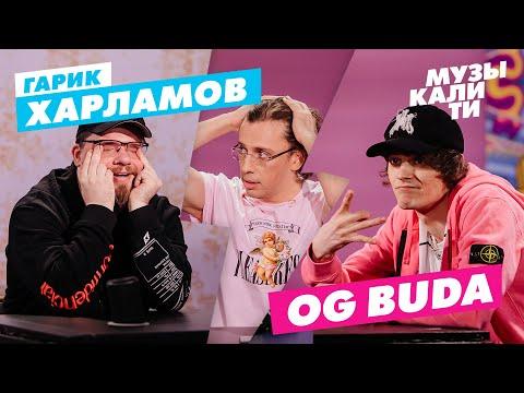 Музыкалити – Гарик Харламов и OG Buda - Видео онлайн