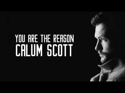 Calum Scott - You Are The Reason (Cover)