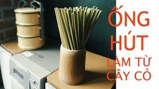 Trên tay ống hút cỏ: giải pháp thay thế ống hút nhựa từ Việt Nam