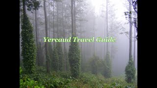 Yercaud tourist places | Yercaud Travel Guide | Yercaud tourism thumbnail