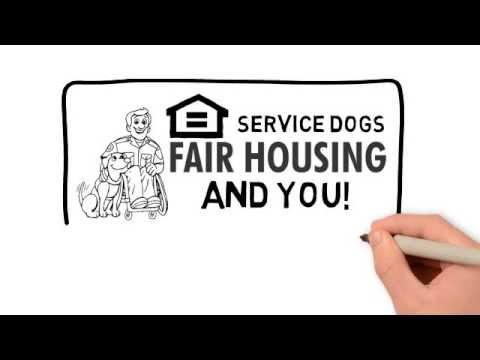Service Dogs Emotional Support Dogs & Housing Laws