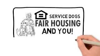 Service Dogs Emotional Support Dogs & Housing Laws(How to keep your dog no matter what your landlord has to say. Check Out More: https://www.officialservicedogregistry.com/register-your-dog/ Emotional support ..., 2015-07-16T21:44:06.000Z)