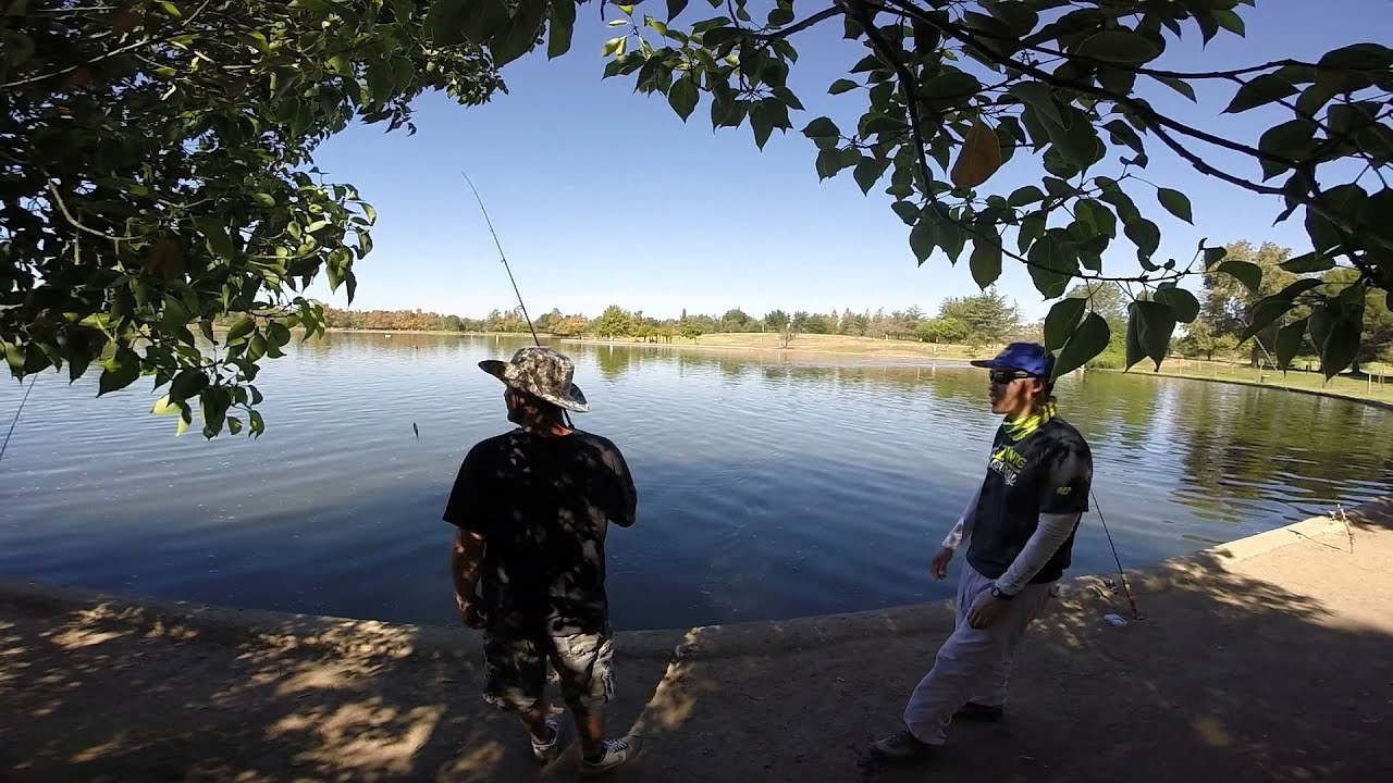 Balboa lake tilapia and carp fishing youtube for Balboa lake fishing
